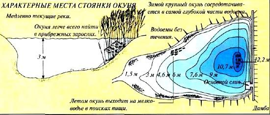 где искать щуку весной на малых реках